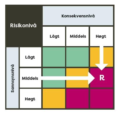 ST 3_2 Risikonivå.jpg